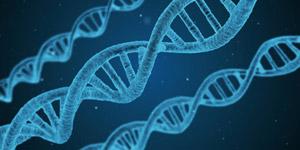遺伝子 ニューロン ゲノム 神経 指定難病