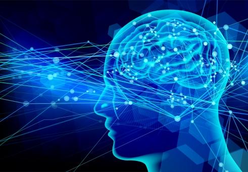脳神経 神経 指定難病